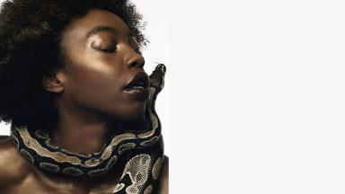 Close up person with afro hair with a snake wrapped around their face